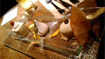 music_photo1457.jpg