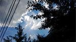 music_photo931.jpg