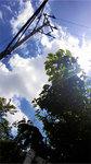 music_photo956.jpg